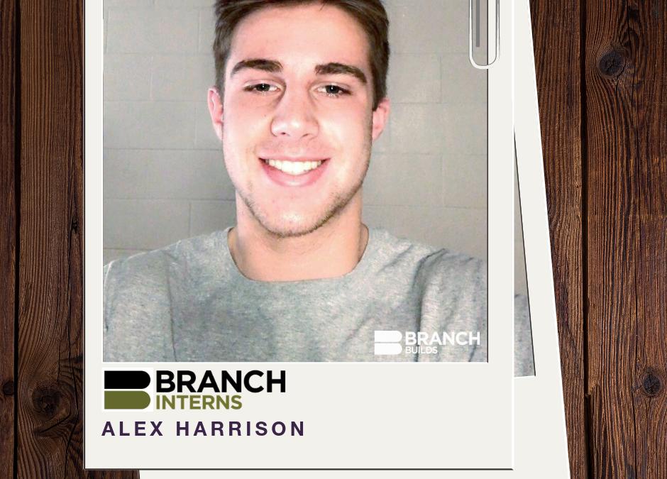 Meet the Intern: Alex Harrison