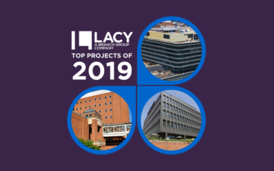 L.A. Lacy Top Projects for 2019
